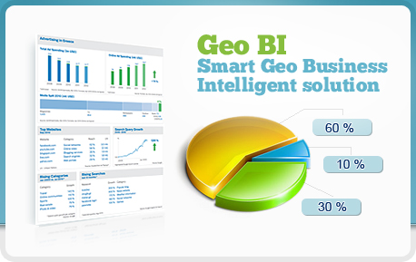 Geo Business Intelligence